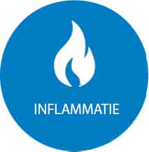 Inflammation-new